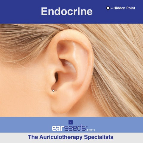 endocrine ear point